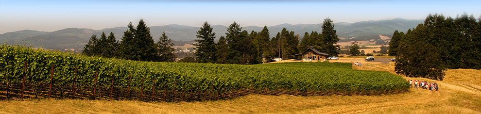 Oregon is Awesome for Travel and Wine