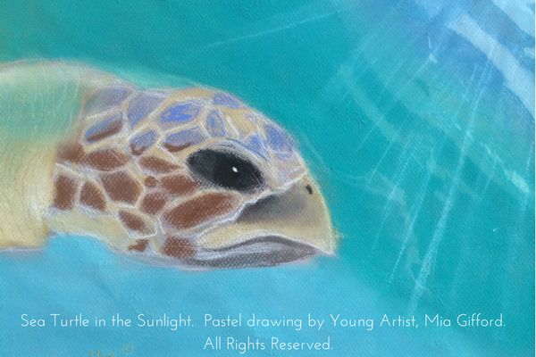 How To Save Endangered Species Through Art